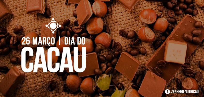 energie_diacacau-blog