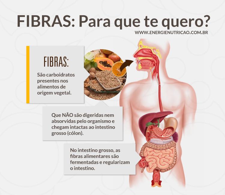 energie_tiposdefibras_intestino