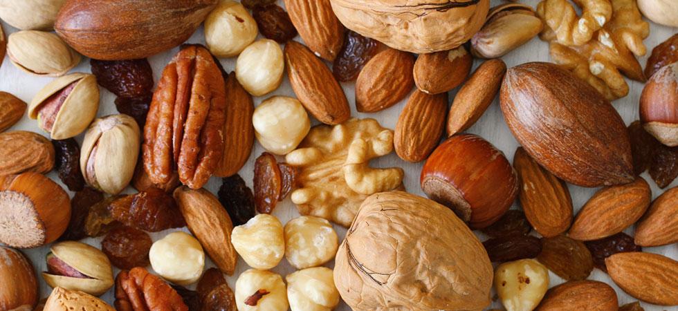 Oleaginosas - fontes de proteínas vegetais